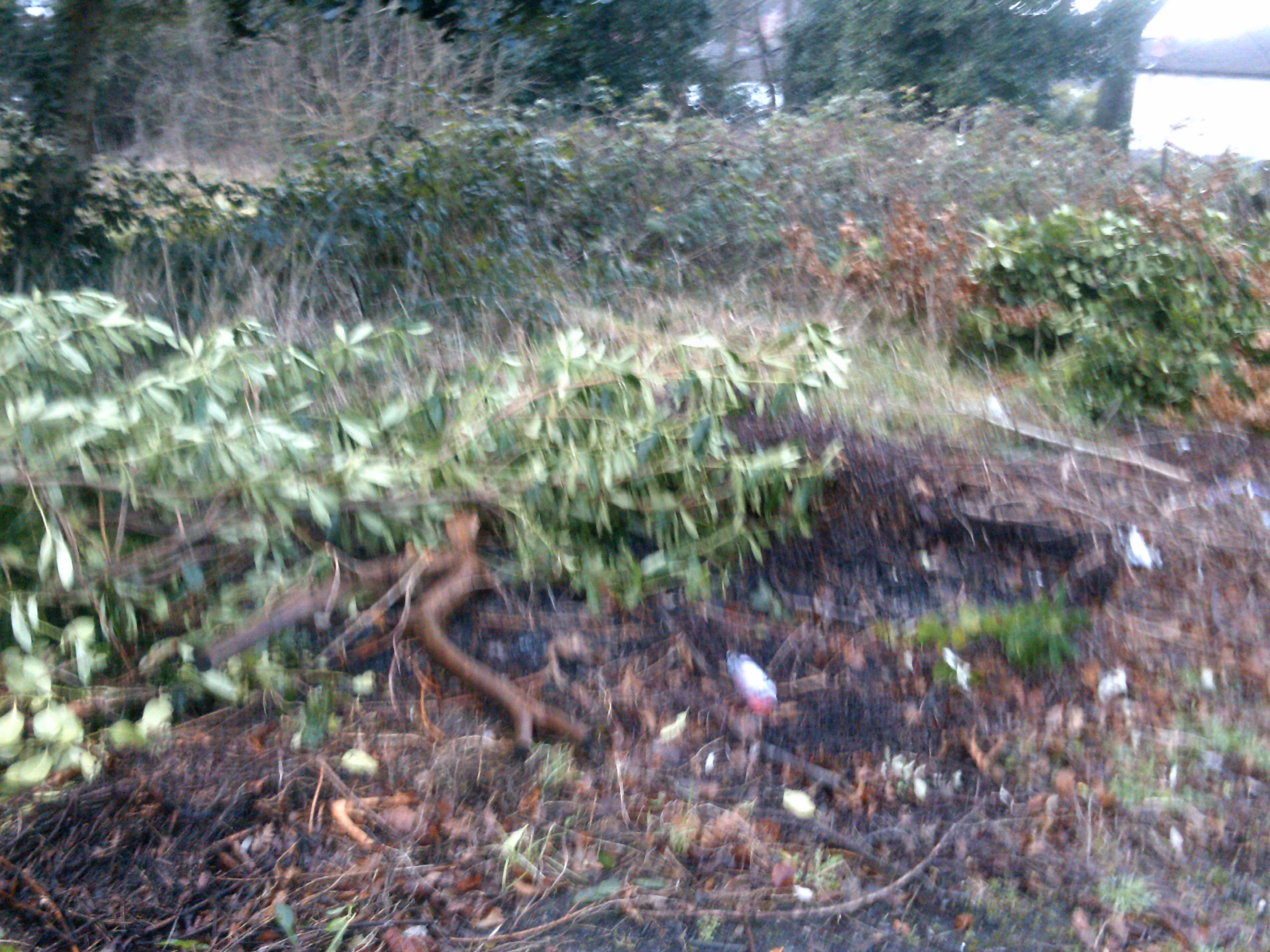 Flytipping Flaybrick Cemetery and surrounding area
