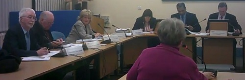 Councillor Jean Stapleton addresses the Cabinet about upcoming changes to the way people register to vote
