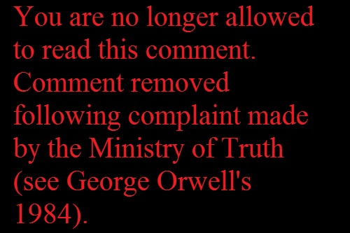 Ministry of Truth George Orwell 1984 comment removed
